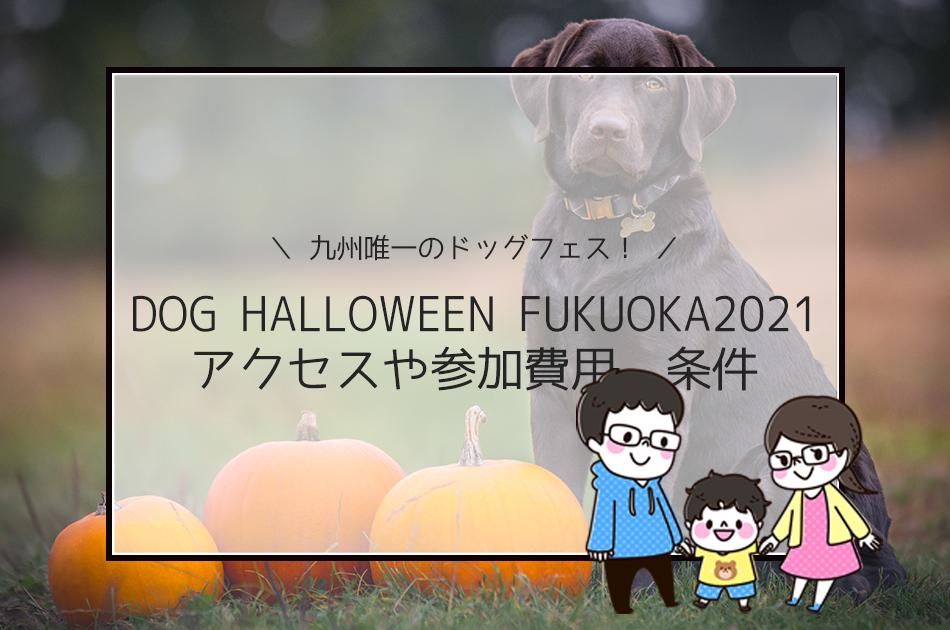 DOG HALLOWEEN FUKUOKA2021は九州唯一のドッグフェス!アクセスや参加費用、条件は?